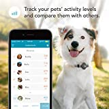 Findster Duo+ Pet Tracker Free of Monthly Fees