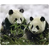Allsop Nature's Smart Mouse Pad Panda 60 % Recycled Content, Anti-Microbial (29879)