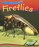 Fireflies, Nancy Dickmann, 1410917703