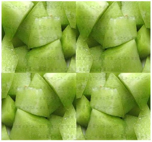 HONEY DEW GREEN MELON - CANTALOUPE seeds ~ HIGH in A, B, and C Vitamins - HONEY SWEET FLAVOR - 105 Days (0050 Seeds - 50 Seeds - Pkt. Size)
