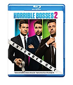 Cover Image for 'Horrible Bosses 2 (Blu-ray + DVD + Digital HD UltraViolet Combo Pack)'