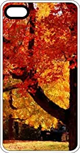 Fall Tree In The Country Clear Plastic Case for Apple iPhone 4 or iPhone 4s