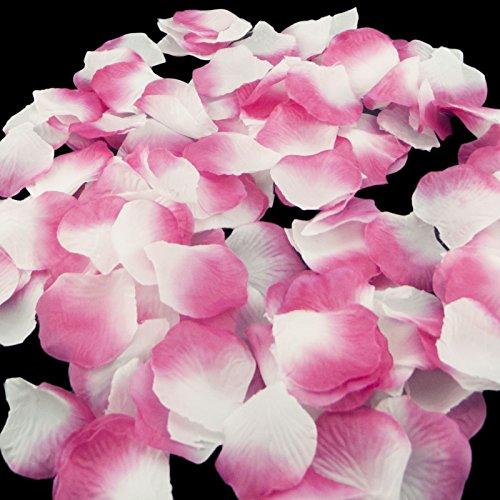 1000 flower petals - 9