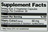 21st Century Bilberry Extract Veg Capsules, 60