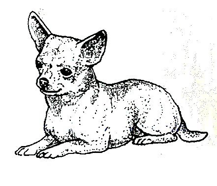 Dog Rubber Stamps - Chihuahua-6E Size: 2