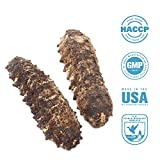 SEABENEFIT Mexico Badionotus Sea Cucumbers - Wild Caught Sea Cucumber Dried All Natural Nutritious Large