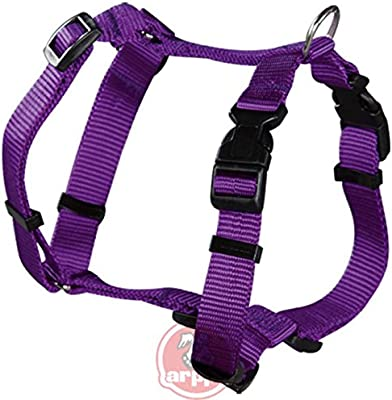 BPS Arnés Perro 70cm x 20mm (Color Violeta): Amazon.es: Productos ...