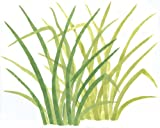 Rainforest Jungle Grass Wall Mural Stencil - Stencil only - 10 mil medium-duty