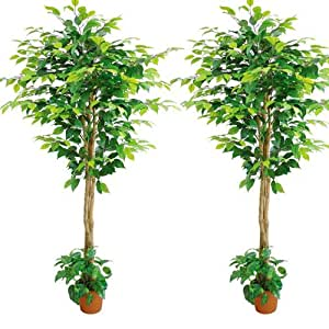Pianta artificiale modello Ficus confezione da 4 pz