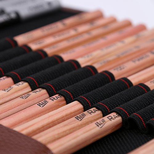 Aookey Sketching Pencils Art Set, Drawing Pencils Art Supplies with Graphite/Charcoal Pencils Blenders Starter Kit, Black