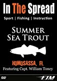 Summer Seatrout Fishing - In The Spread