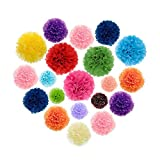 Fecedy 15pcs Mixed Colors Tissue Paper Pom-poms Flower Ball for Wedding and Party and Outdoor Decorate