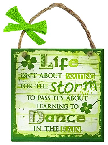 Carrolls Irish Gifts Rustic Ireland 'Life Storm' Wooden Plaque With A Green & White Wooden Design
