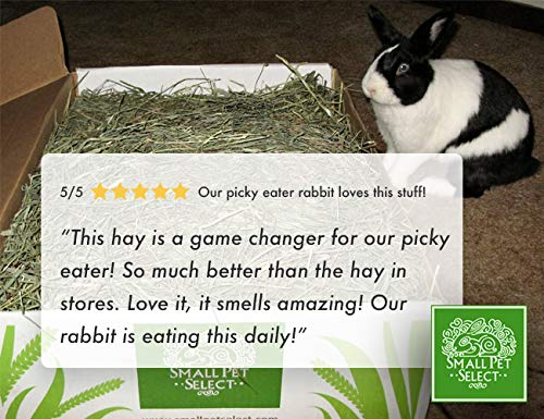 """Small Pet Select 2nd Cutting """"Perfect Blend"""" Timothy Hay Pet Food 3"""