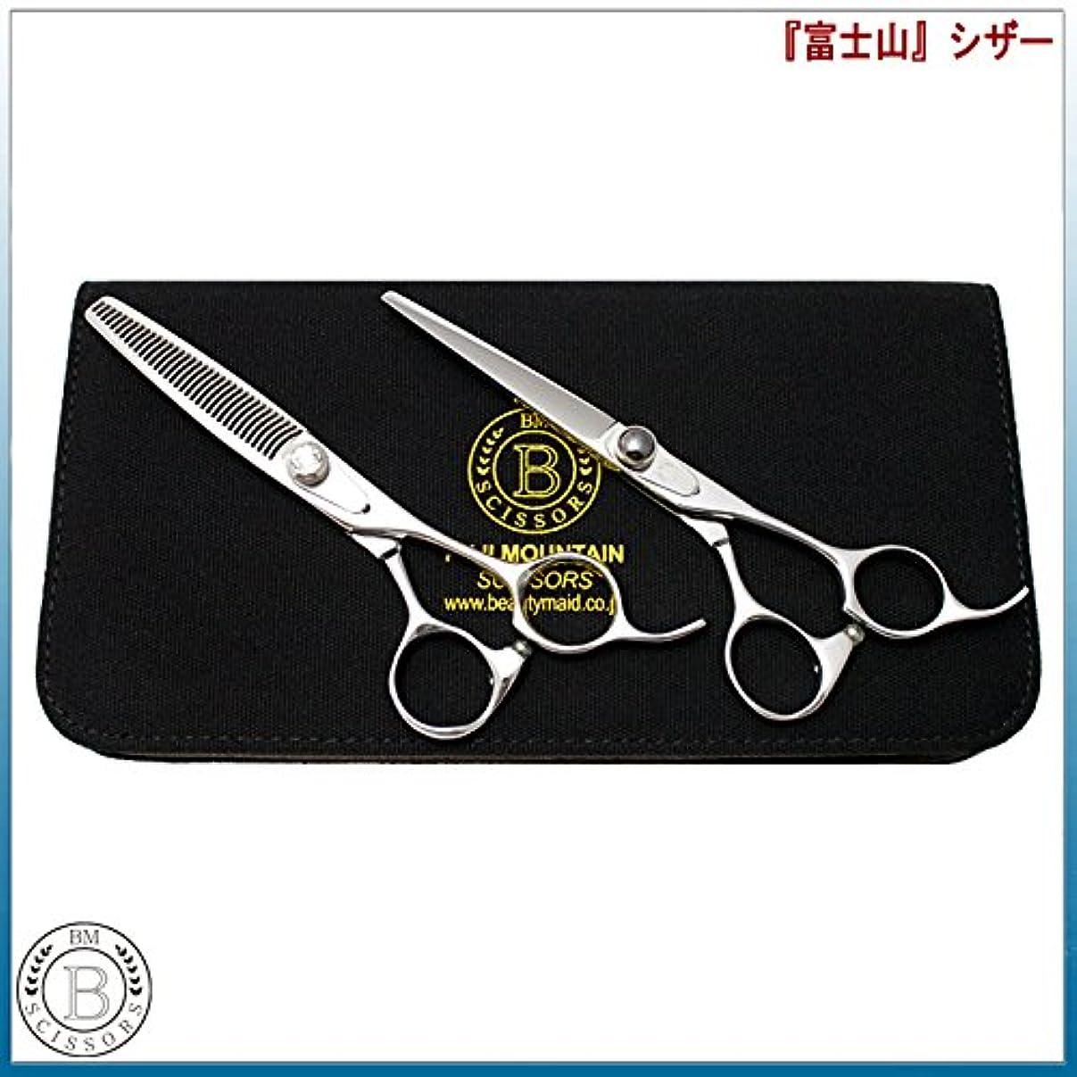 ランデブーアルミニウムクライストチャーチケープ付き 美容プロ仕様 高級散髪ハサミ2本セット+ケース