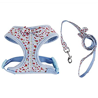 Kuoser Adjustable No Pull Bowtie Dog Harness & Leash Set Dog Vest Harness Leash Set Leads for Cats & Small Dogs
