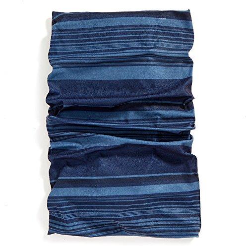 Patagonia Lightweight Ski Hat (EMS Blanket Stripe Multiclava Vintage Indigo Blue One Size)