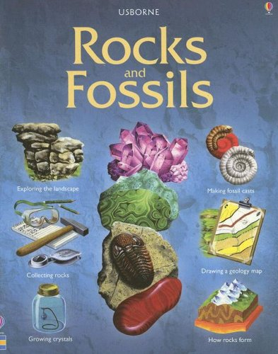 Rocks & Fossils (Hobby Guides) pdf