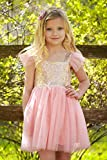 Gold and Pink Gauze Camisole Layered Tutu Dress Girls Valentines Dress, (5 years)