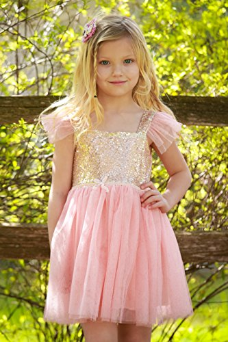Gold and Pink Gauze Camisole Layered Tutu Dress Girls Valentines Dress, (5 (Pink Sparkling Heart)