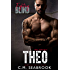 Fighting Blind: Theo (MMA Romance Book 1)