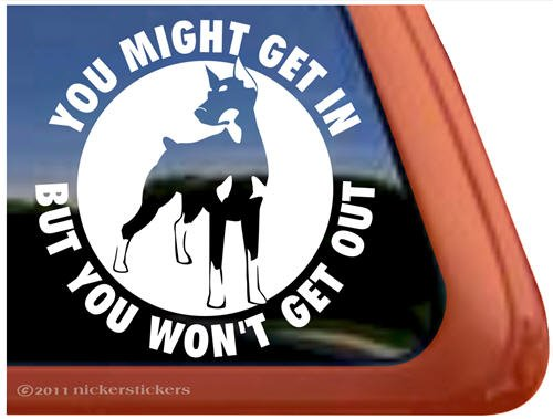 Pinscher Decal - You Might Get In, But You Won't Get Out ~ Doberman Pinscher Dog Vinyl Window Decal Sticker