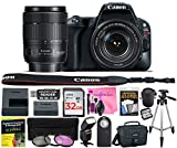 Canon EOS Rebel SL2 24.2 MP Digital SLR 1080p Camera (Wi-Fi, Bluetooth & NFC) Body, Canon EF-S 18-135mm 3.5-5.6 IS USM Lens with Deluxe Camera Works Accessory Bundle & 32GB High-Speed Memory Card For Sale