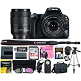 Canon EOS Rebel SL2 24.2 MP Digital SLR 1080p Camera (Wi-Fi, Bluetooth & NFC) Body, Canon EF-S 18-135mm 3.5-5.6 IS USM Lens with Deluxe Camera Works Accessory Bundle & 32GB High-Speed Memory Card