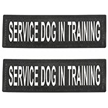"SERVICE DOG IN TRAINING Patch with Velcro Back and Reflective Lettering for Service Dog In Training Vests (Service Dog In Training, Large - 2"" x 6"")"