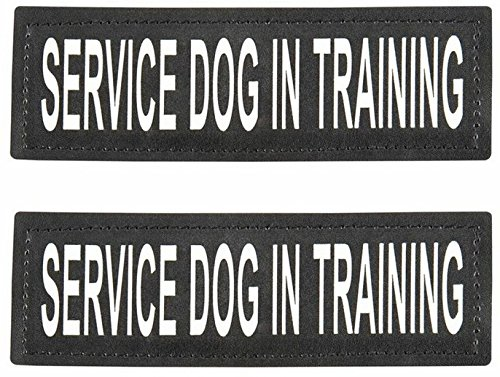 SERVICE DOG IN TRAINING Patch with Velcro Back and Reflective Lettering for Service Dog In Training Vests (Service Dog In Training, Large - 2