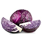 Portal Cool 250 Heirloom Mammoth Red Rock Cabbage Seeds Comb S/H