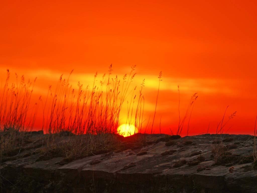 Lais Jigsaw Sun Sunset Red Dawn 2000 pieces