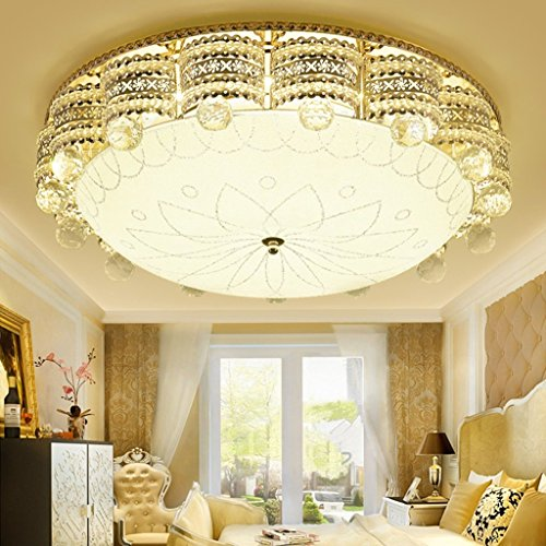 Living Flower Ball Pendant Light Shade Clear in US - 1