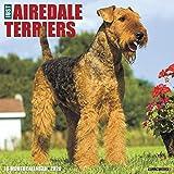 Just Airedale Terriers 2020 Wall Calendar (Dog Breed Calendar)