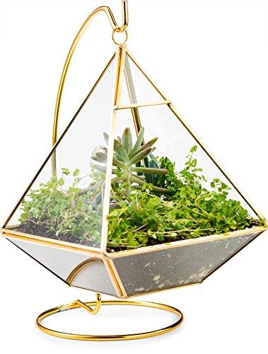 51J07oLQv L - KooK Geometric Pyramid Hanging Terrarium With Stand - Gold