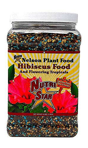 Nelson Hibiscus and Flowering Tropical Plant Food In Ground Container Indoor Outdoor Granular NutriStar 10-4-12 (4 LB) (Best Fertilizer For Tropical Plants)