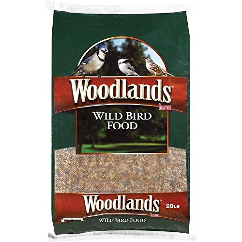 Kaytee Products 100034121 Wild Bird Food