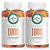 (2-Pack) Organic Hemp Chewy Bears - 1000MG - Sweet & Sour, Infused with Colorado Grown Hemp Oil Extract, Non-GMO, Vegan.