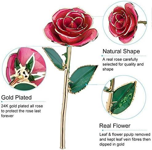 zjchao Amour /Éternellement 24K Dor/é R/éel Rose Blanc-Rose Cadeau de lamour