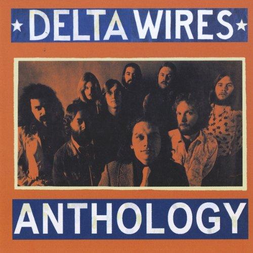delta wires - 7