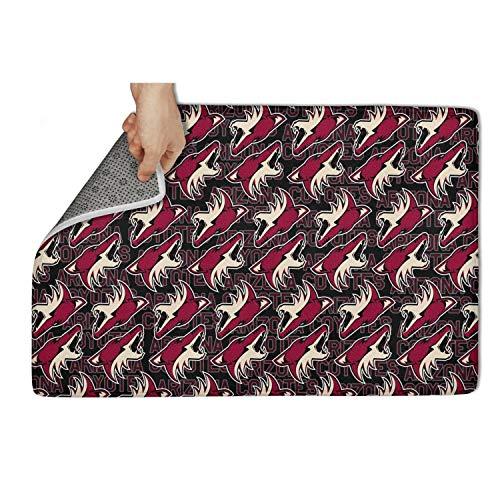 GMFDDFJDG Interest Floormat Non Slip Door Mats Doormat Carpet pet Front Door Entrance go Away Doormat Rug Floormat Super Absorbtion 31