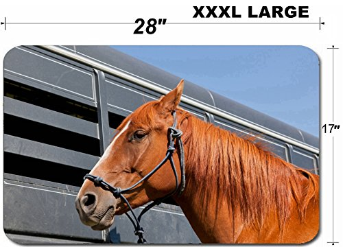 - Luxlady Large Table Mat Non-Slip Natural Rubber Desk Pads IMAGE ID: 34247959 A close up of a reddish brown horse tied with a blue rope halter to a ho