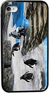 Rikki KnightTM Penguins on Ice Design iPhone 5 & 5s Case Cover (Black Rubber with bumper protection) for Apple iPhone 5 & 5s by icecream design