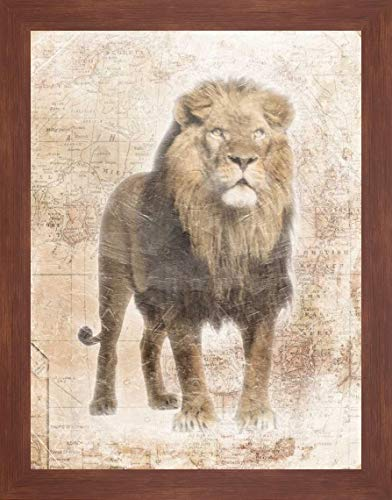 African Lion by Jace Grey - 22