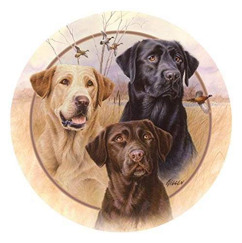 Thirstystone Stoneware Coaster Set, Great Hunting Dogs