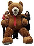 Huge teddy dark brown 108 inches