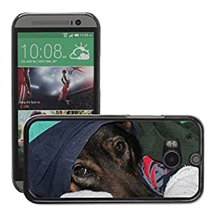 Hot Style Cell Phone PC Hard Case Cover // M00129650 Cold Dog Sweet // HTC One M8