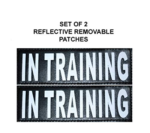 (Doggie Stylz Set of 2 Reflective in Training Velcro Patches for Service Dog Harnesses & Vests.)