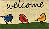 Welcome Doormat by Castle Mats, Size 18 x 30 inches, Non-Slip, Durable, Made Using Odor-Free...