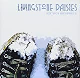 Don't Know What Happiness Is by Livingstone Daisies